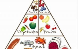 Paleo Food Pyramid for Busy People