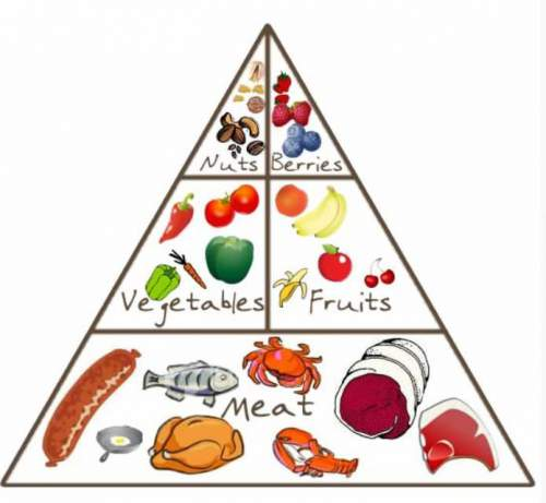 The Paleo Diet Food Pyramid: 5 things to know
