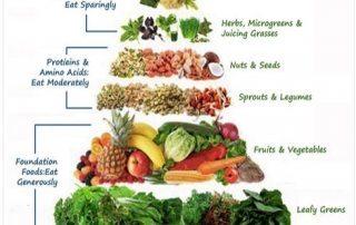 Raw Food Pyramid