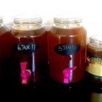 Kumbucha – a glass a day will keep the doctor away