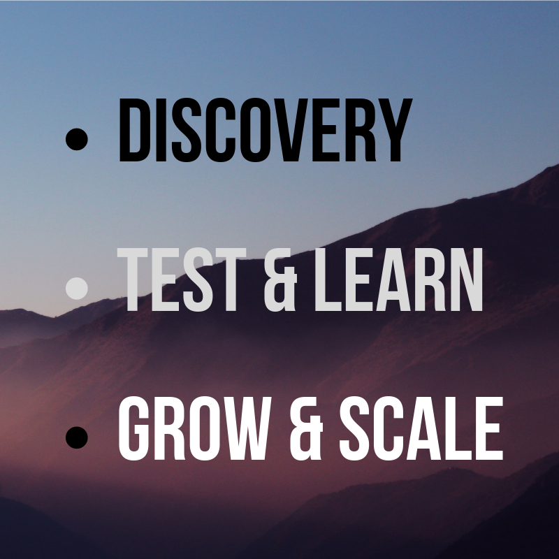 discovery test & learn grow & scale