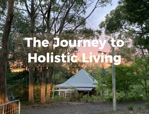 The Journey to Holistic Living